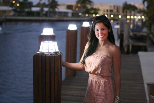 Solar Piling Light Replacement Lens